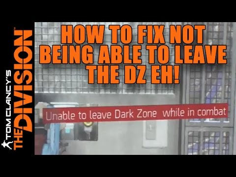 how to fix graphic bug in the division