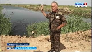 В одном из охотхозяйств Наримановского района обнаружили дамбу, которая отделила канал от водотока
