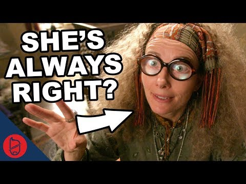 Trelawney's Actually ALWAYS Right? | Harry Potter Explained