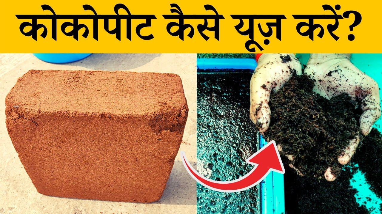 कोकोपीट कैसे यूज़ करें? जानिए गार्डनिंग में कोकोपीट काइस्तेमाल| Coco Peat Uses For Plants In Hindi