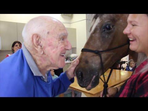 Comfort Horse Takes Residents Down Memory Lane at Senior Center