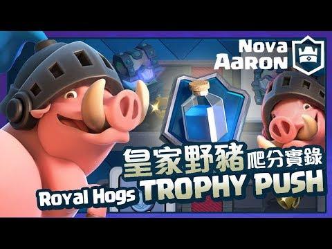 【Nova l Aaron】皇家野豬爬分實錄 Royal Hogs Trophy Push | Clash Royale皇室戰爭