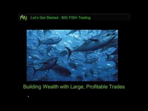 Big Fish Trading: Catching the Big Moves in Stocks & ETFs wi