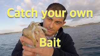 Bass Fishing and Bait Collection