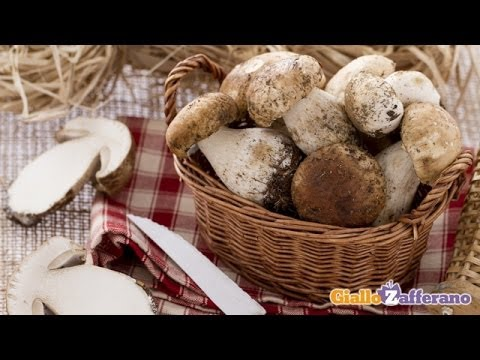 How to clean porcini mushrooms - cooking tutorial