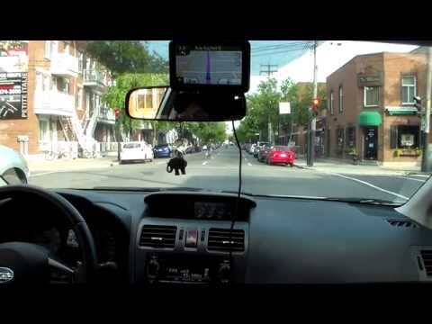 Laval Montreal a Longueuil Dashcam with traffic full length
