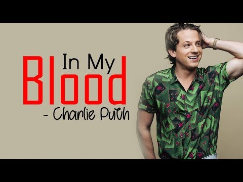 Shawn Mendes - In My Blood (Charlie Puth Cover) [Full HD] lyrics