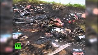 Последствия падения Boing-777 на юго-востоке Украины — съемка очевидца (+18)