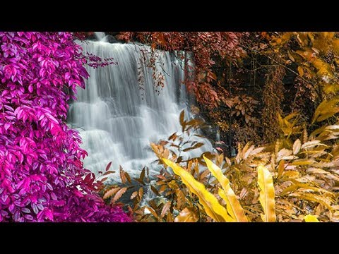 Soothing Relaxing Music, Sleep Meditation Music, Relaxing Ambient Music, Soothing Music  🕙10 Hours - Поисковик музыки mp3real.ru