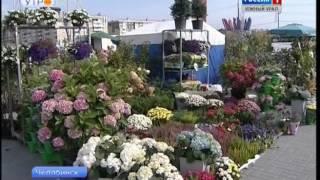 Выставка для садоводов