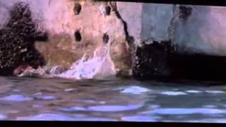 Deep Blue Sea- Susan Sacrifices Herself