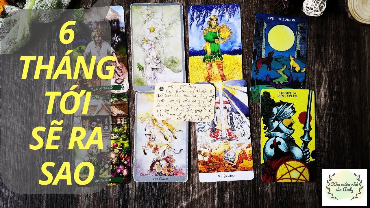 6 tháng tới sẽ ra sao  - Chọn 1 tụ bài Tarot - Alo Andy