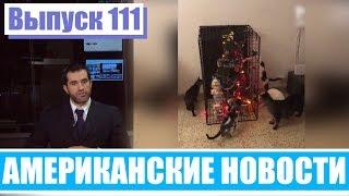 Hack News   Американские новости Выпуск 111