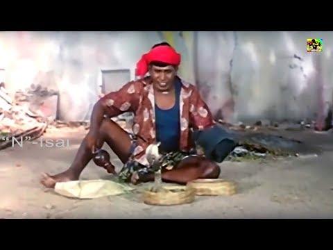 வடிவேலு மரண காமெடி 100% சிரிப்பு உறுதி    வடிவேலு நகைச்சுவை    Vadivelu Snake Comedy