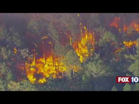 Aerials of a major wildfire in Polk County, Florida | firefighting