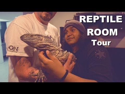 Reptile Room Tour 2017 HUGE SNAKES |Legion Reptiles