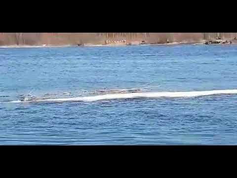 Военные спускают паром на реке Кемь. Карелия