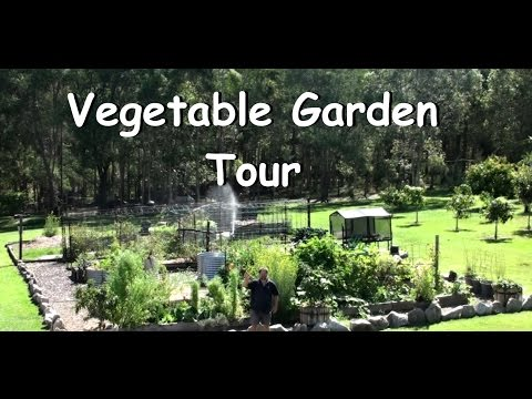 Vegetable Garden Allotment Tour Subtropical Climate Lots Growing!