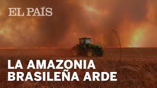 la-amazonia-de-brasil-arde-a-un-ritmo-r-cord