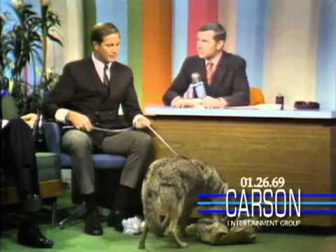 Johnny Carson Blooper: A Coyote Answers Nature's Call on