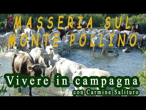 Monte Pollino: masseria! - Vivere in campagna con Carmine Salituro