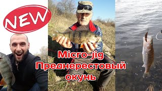 ОКУНЬ КЛЮЕТ НА МЕЛКИЕ ПРИМАНКИ Ловля преднерестового окуня весной Рыбалка на спиннинг 2020