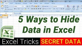 5 Ways to hide data in Excel - Excel Tips and Tricks
