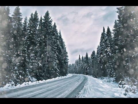 Rammstein -ЗИМНИЙ ЛЕС (Премьера) Клип 2018-2019 Mp3