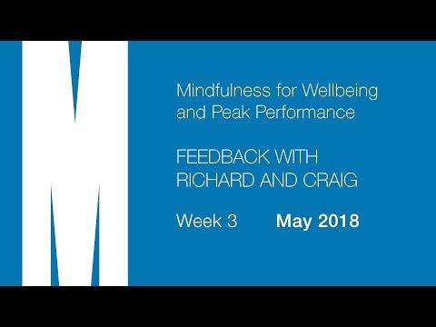 Mindfulness: Feedback from Craig and Richard - Week 3 - May 2018