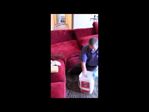How to Clean Up Vomit: Healthy Home Habit #4