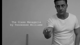 The Glass Menagerie - Remo Vinzens 2016