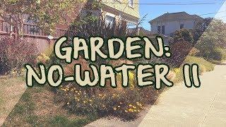 Garden: No-Water II