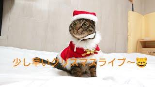 Christmas Live少し早めのクリスマスライブ~ thumbnail