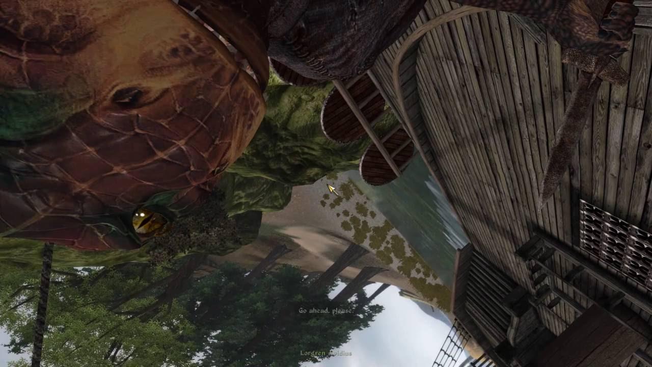 Bug With Oblivion Reloaded Dialog Camera Mode 2