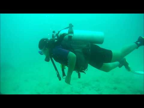 Scuba Diving in Nemo Reef, Havelock Island Andaman, 2017