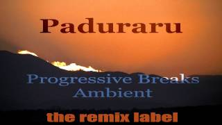 Paduraru   Progressive Breaks Ambient Acid melody on dub rhythms album promo