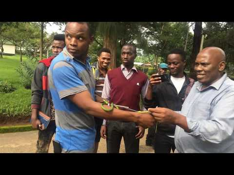 College Of African Wildlife Management in real world of conservation (snake capture & translocation)