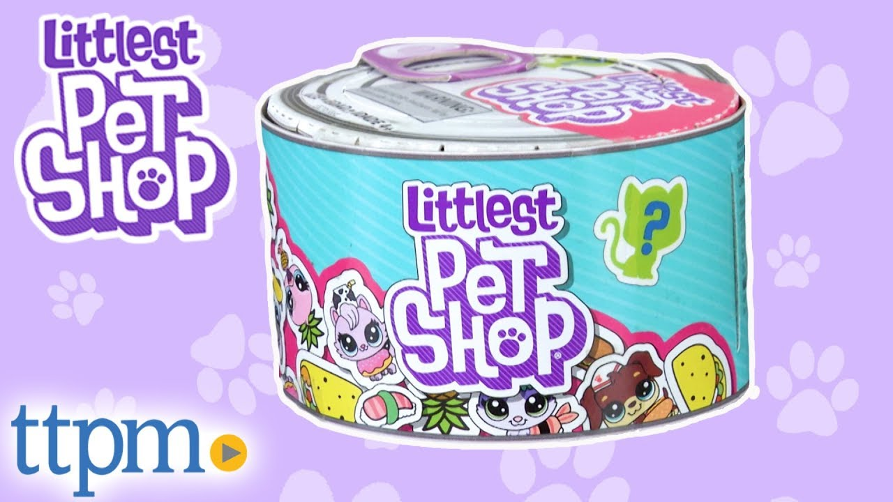 littlest pet shop hasbro # 22
