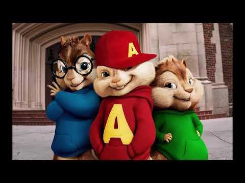 Shotgun chipmunks