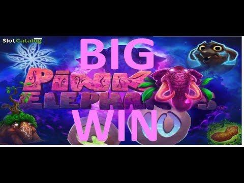 Big Wins on the new Pink Elephant Slot!!