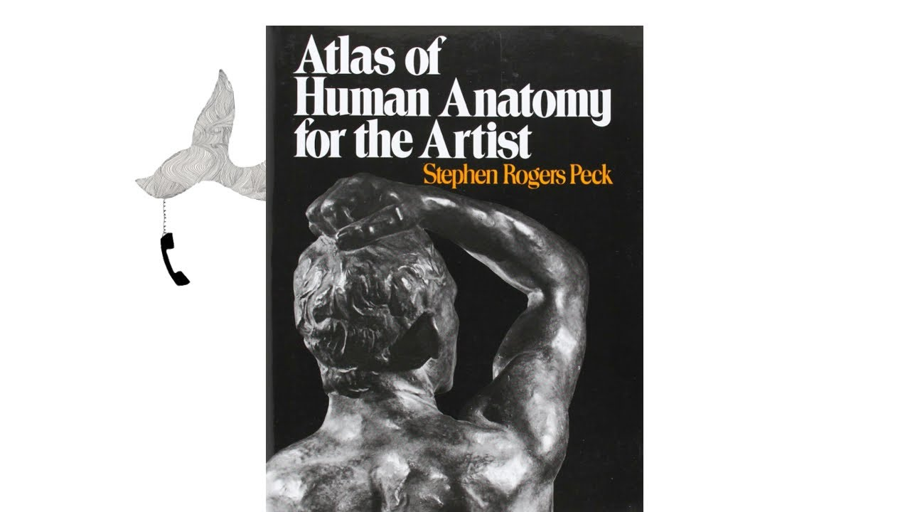 The Atlas Of Human Anatomy For The Artist By Stephen Rogers Peck