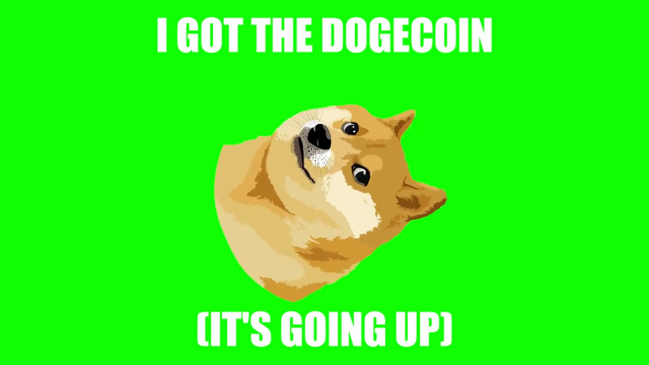 Why Is Dogecoin Going Up - Why Has Dogecoin Gone Up Cryptocurrency S ...