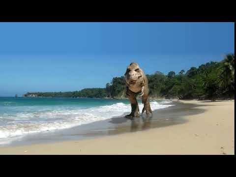 T.rex Walking On The Beach