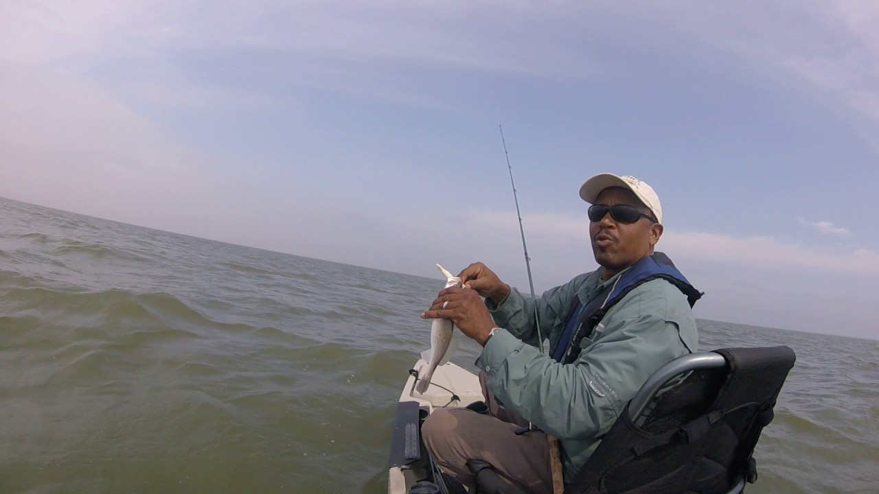 Tx city texas fishing dollar reef pre spring on hooked up for How much is a one day fishing license
