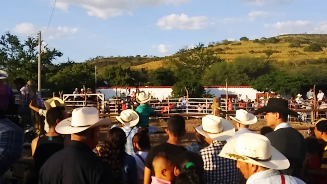 Jaripeo Colonia Madero Apozol Zacatecas 2016 Youtube