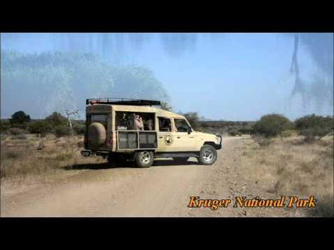 Safari in Kruger National Park with Mpala Safari Lodge