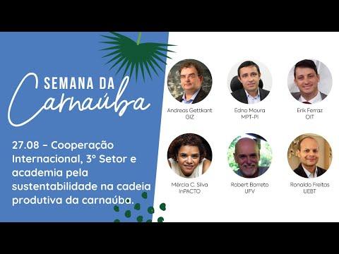 RESUMO 27.08   Semana da Carnaúba - Cooperação Internacional, 3° Setor e academia.