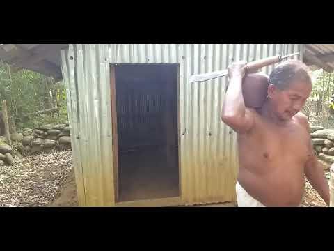 New Dimasa Video.tongikro Aluma Daiko