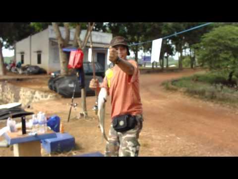 Anh Lợi câu cá mè - thegioicauca.com