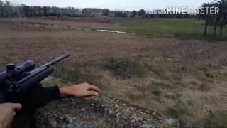 Cazando patos a 120 metros con rifles de aire comprimido (chumbera)